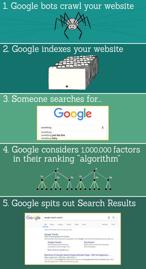 """Infographic of How Google Works - SEO 101 - 1. Google bots (aka spiders) crawl your website. 2. Google indexes your website. 3. Someone searches Google for a term 4. Google considers 1,000,000 factors in their ranking """"algorithm"""". 5. Google spits out Search Results."""