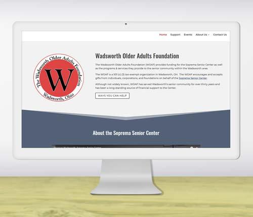 Portfolio website design for non-profit foundation